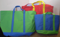 """Block Party"" Insulated Canvas Tote Bags"