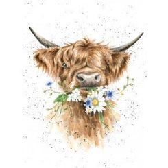 'Daisy Cow' Card - Sold Out