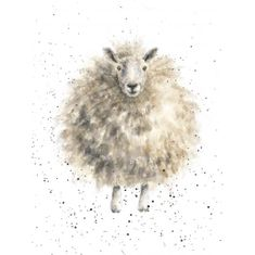 'The Woolly Jumper' Card