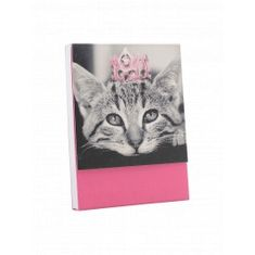 Princess Cat Purse Notes - Sold Out