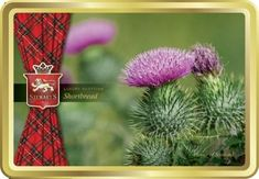 Stewart's Flower of Scotland Shortbread Tin - 150g - Sold Out