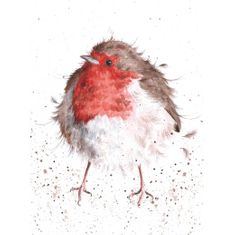 'The Jolly Robin' Card - Sold Out