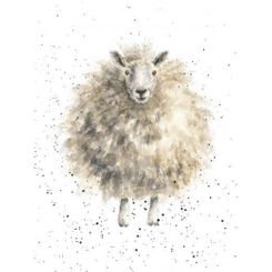 'The Woolly Jumper' Card - Sold Out