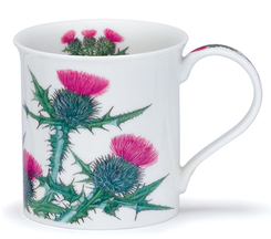 Dunoon Scottish Thistle - Bute