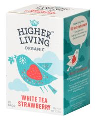 Higher Living White Tea Strawberry - 20ct Bags - Sold Out