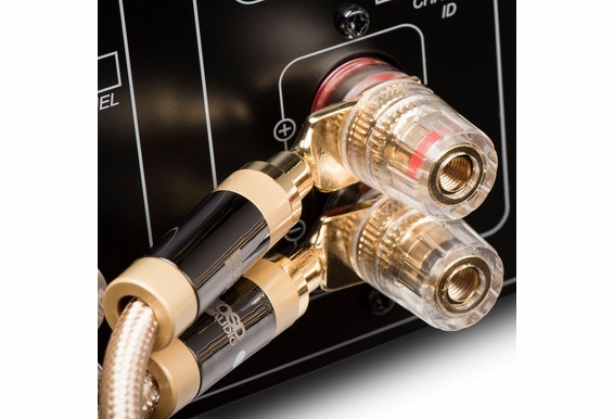 Aurum Series Audiophile-grade Speaker Cable, 14 Gauge, 2-connductor Stereo Pair with Interchangeable Spade/Banana Connectors [6.5FT - 49.2FT]