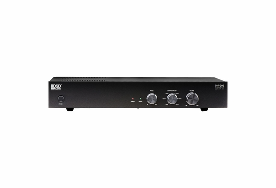 SMP300 Class D Amplifier Mono Subwoofer Amplifier with 500 Watts of Peak Power/ 250W RMS
