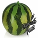 Watermelon USB Speaker Pair