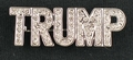 TRUMP Crystal Pin