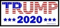 Trump 2020 Patriotic Lapel Pin