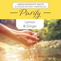Aromatherepy Melts (Purify)