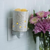 Pluggable Frangrance Warmers (African Lily)