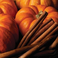 Wax Melts Pumpkin Spice