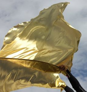 Praise Worship Warrior Flag Solid Gold King of Glory Set of 2 (Flexible Rod)