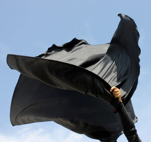 Reversal of Injustice and Crimes Against Humanity RECOVER ALL! Solid Black Warfare Warcry Victory Flags Set of 2 Flex™ Rod Beauty for Ashes®