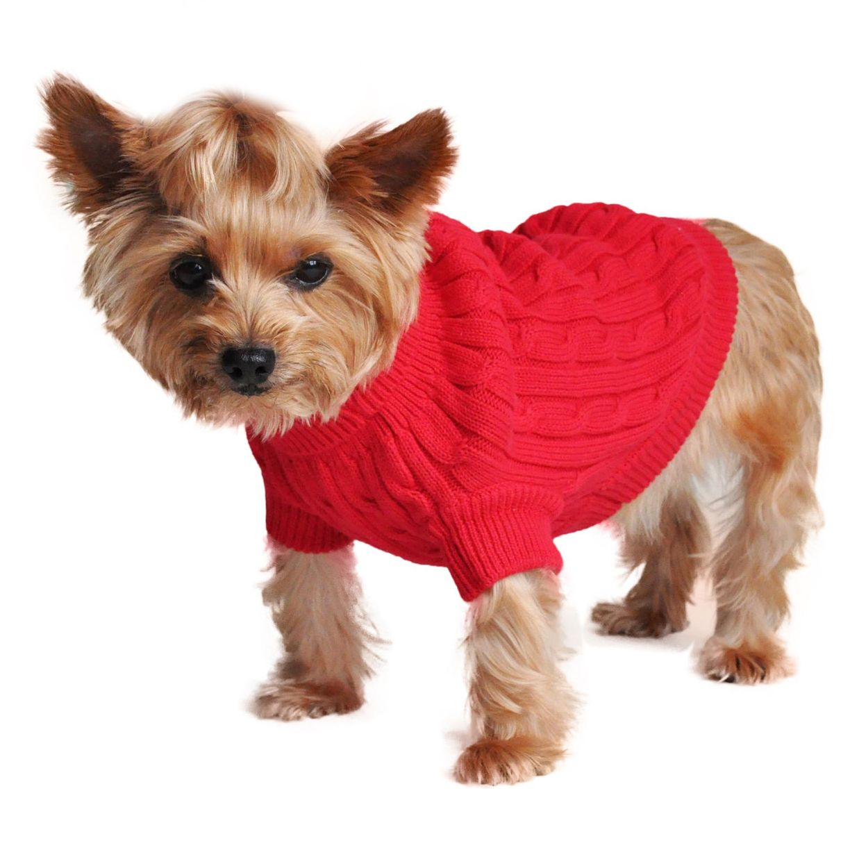 Cotton Cable Knit Dog Sweater Pattern Free Hypoallergenic ...