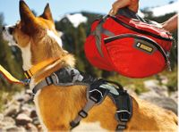 Deciding On The Right Pack For Your Dog