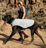 Dog Cooling Gear