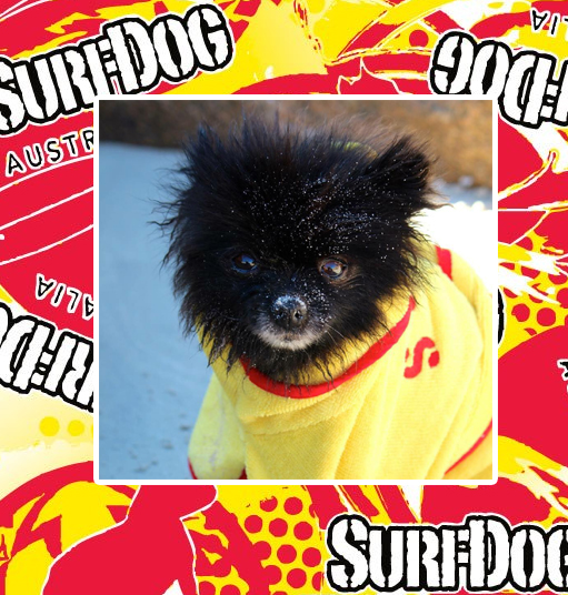 Surf Dog Australia Robe Dog Drying Coats  765a21256