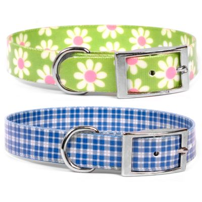 Elements Waterproof Collars