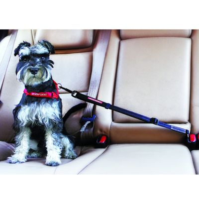 EzyDog Click Adjustable Dog Car Restraint