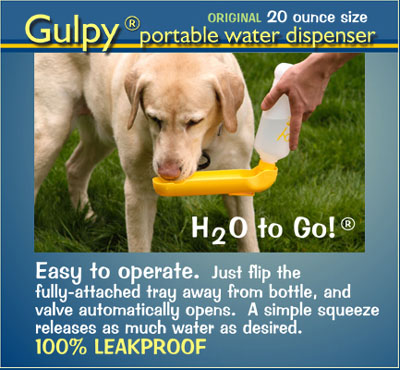 Gulpy Pet Water Dispenser