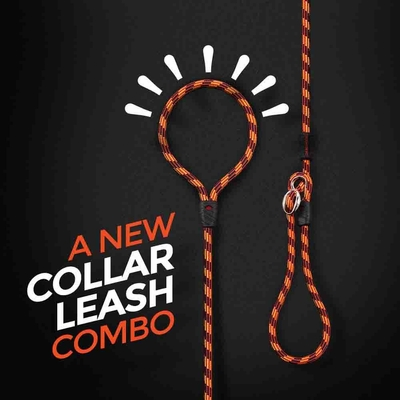 Luca Leash Collar & Leash Combo