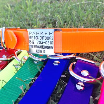 Personalized Waterproof Collars With Slide-On Nameplate