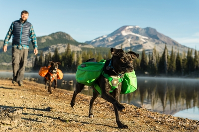Ruffwear Approach Pack