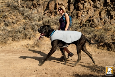 Ruffwear Swamp Cooler Dog Cooling Coat - Previous Model