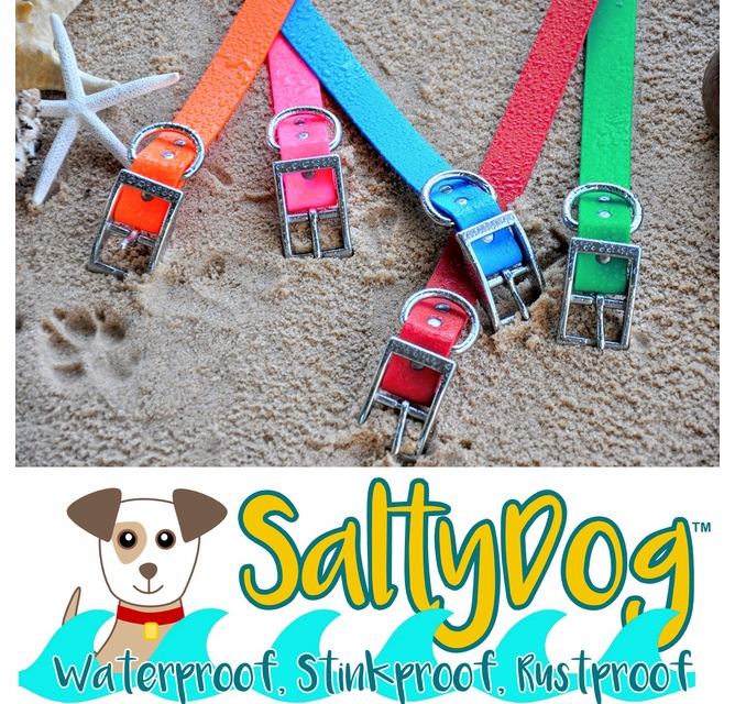 Pineapple Dog Collar made with rust proof stainless steel and marine grade materials Small-Large