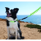 Specialty Leashes