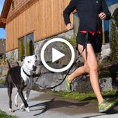 Spindrift Daisy Runner Dog Jogging Belt Video Review