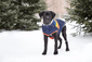 Summit Puffer - Sherpa Lined Water Resistant Dog Coat