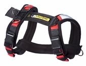 Urban Trail Padded Dog Harness