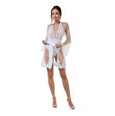 Feminine Mystique Ultra Sheer Robe