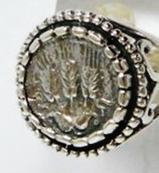 Ancient Roman Coin sterling silver   ring