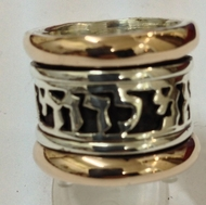 Ani le dodi ring spinner ring silver & gold