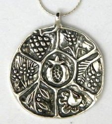 Sterling silver necklace  Pomegranate necklace   silver ethnic necklace