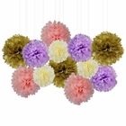 12pcs Decorative Tissue Paper Pom Poms (12pcs, Ballerina) - Premier