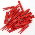 2.75-inch Craft Wood Clothespins/Peg Pins (100pc, Red) - Premier