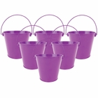 "4""H Metal Crayon/Pencil Holder Favor Bucket Pails (6pcs, Plum) - Premier"