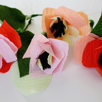 Crepe Paper Roll 20in Apricot
