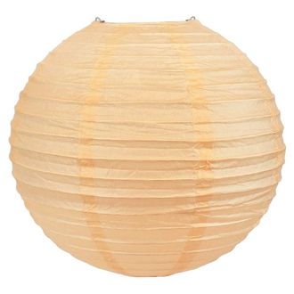 Final Clearance 12inch Paper Lantern Cameo