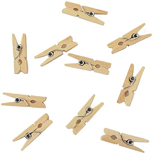 Mini 1-inch Craft Wood Clothespins/Peg Pins (100pc, Natural Wood) - Premier