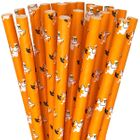 Paper Straws 25pcs Orange and White Ghosts