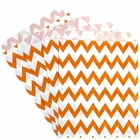 Paper Treat Bags 24pcs Medium Chevron Orange