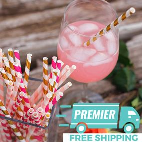 Premier Party Paper Straw Kits