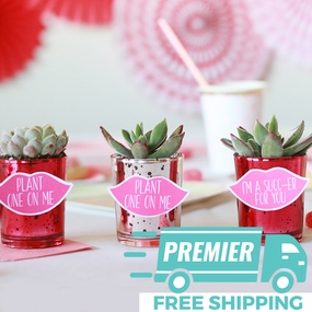 Premier Valentine's Day Decorations