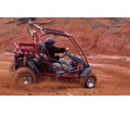 """<b><font color=""""black""""><font class=""""size4"""">Adult & Youth Size 150cc to 400cc Go Karts & Buggy's-</font></b>"""